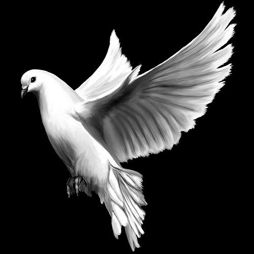 Гравировка голубей на памятнике